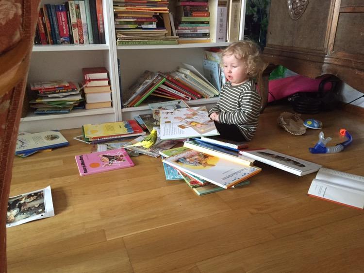 pappabloggar, undulat, barn läser böcker,