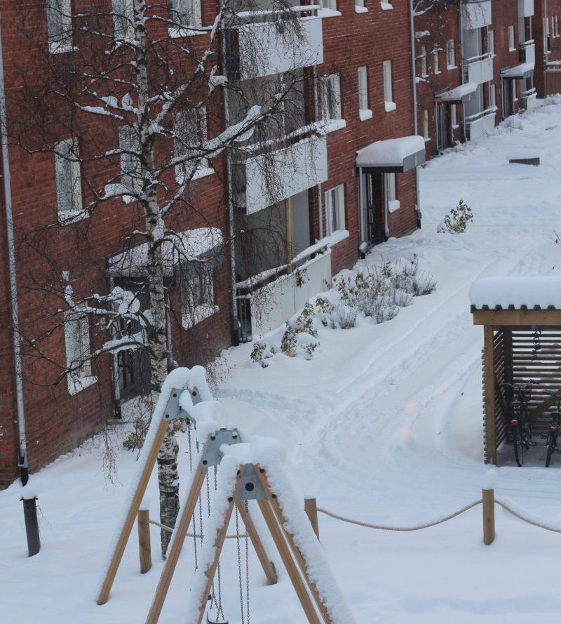 vinterlandskap, snö, pappablogg, umeå, november